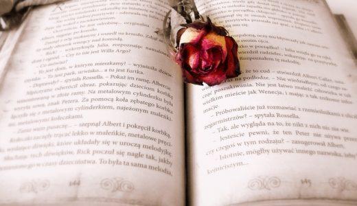 言葉を操る大人の為のファンタジー小説『図書館の魔女』感想文!名作すぎて読了後の喪失感が凄すぎる…